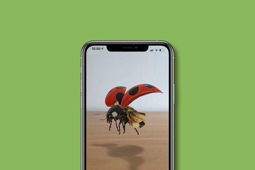 Google ajoute aux résultats de recherche des insectes en 3D et en réalité augmentée: ce sont ceux disponibles et vous pouvez donc les voir
