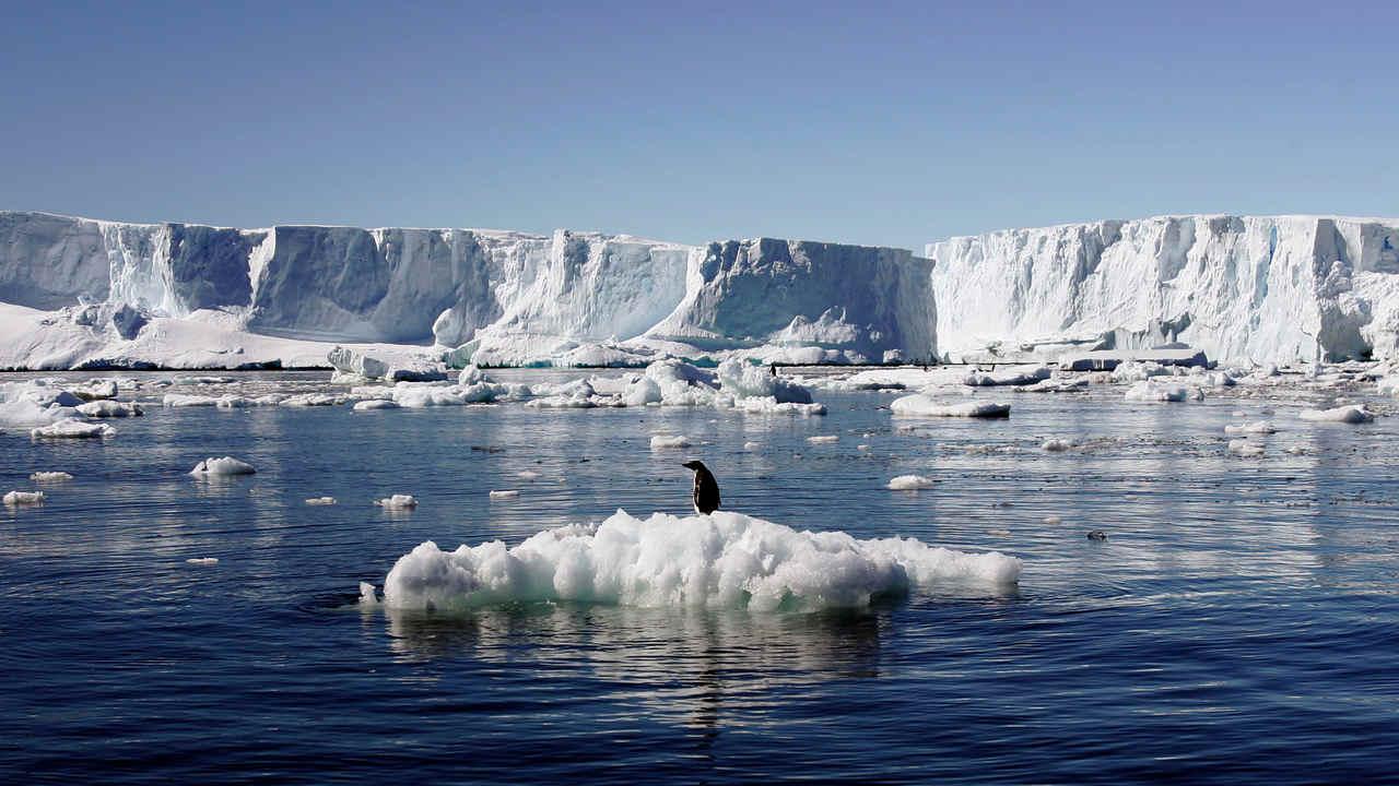 La Moitié Des Plates Formes Glaciaires De L'antarctique Qui Retiennent Les