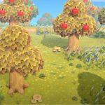Voici Ce Qui Va Arriver Avec Fall Animal Crossing: Mise