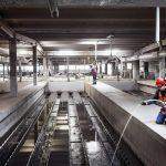 Veolia Offre 2,9 Milliards Pour 29,9% D'engie à Suez En