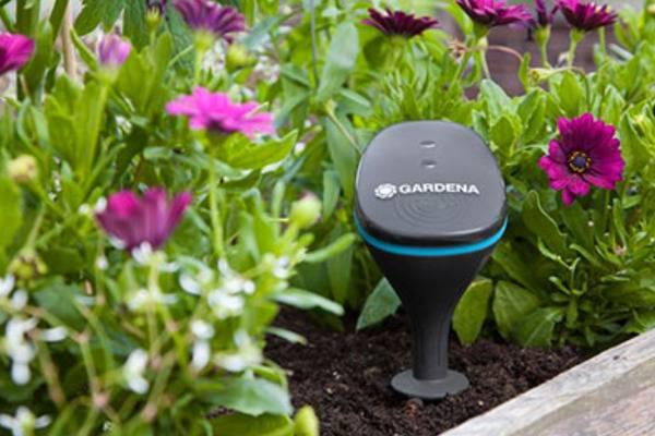C'est Ce Que Les Robots Tondeuses Et Les Systèmes D'irrigation