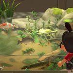 Voici Les Nouveaux Poissons Et Insectes D'août Dans Animal Crossing: