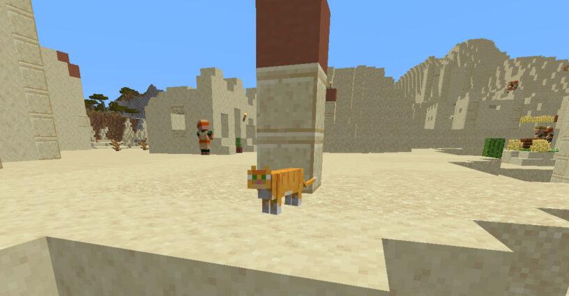 Chat debout dans un village du désert à Minecraft