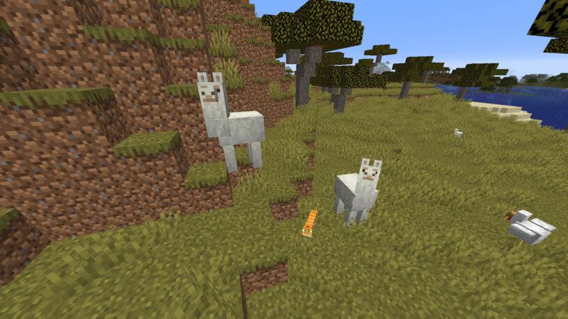 Lamas Minecraft dans un biome de savane