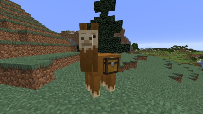 Lama avec un coffre attaché dans Minecraft