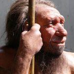 Le régime paléo: ce que la science dit de manger comme nos ancêtres l'ont fait