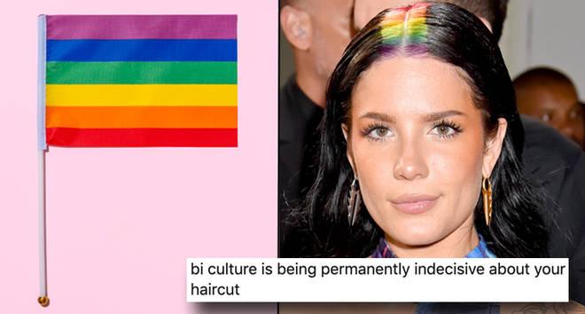 21 mèmes bisexuels pour la semaine de sensibilisation bisexuelle