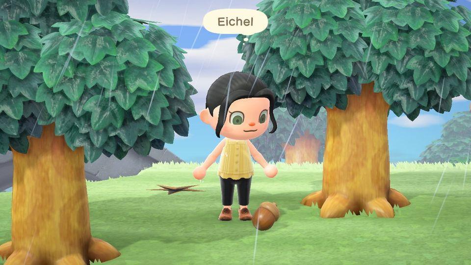 Animal Crossing New Horizons Lance La Saison Acorn And Cones: