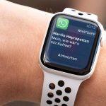 Apple Watch Series 6 Ne Devrait Pas être Livré Avec