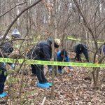 Ces scientifiques enterrent des cadavres humains au milieu de la forêt pour voir comment sa décomposition affecte les plantes voisines