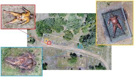 Zones des installations de recherche en anthropologie médico-légale avec des restes squelettisés non mis en cage