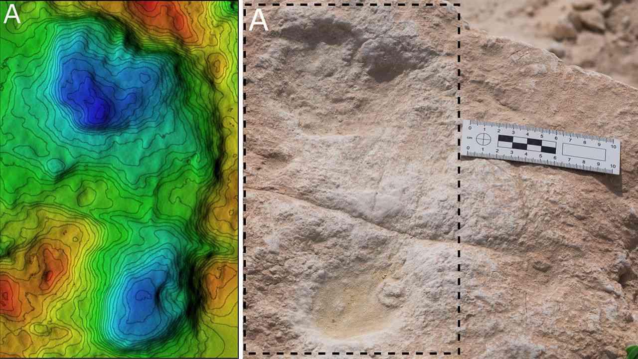 Des empreintes humaines et animales datant de 120 000 ans découvertes dans le désert de Nefud en Arabie saoudite