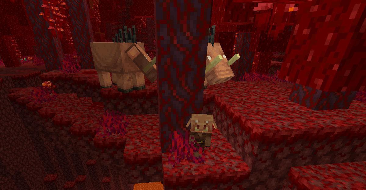 La Nouvelle Version Préliminaire De Minecraft 1.16.3 Pour Java Est