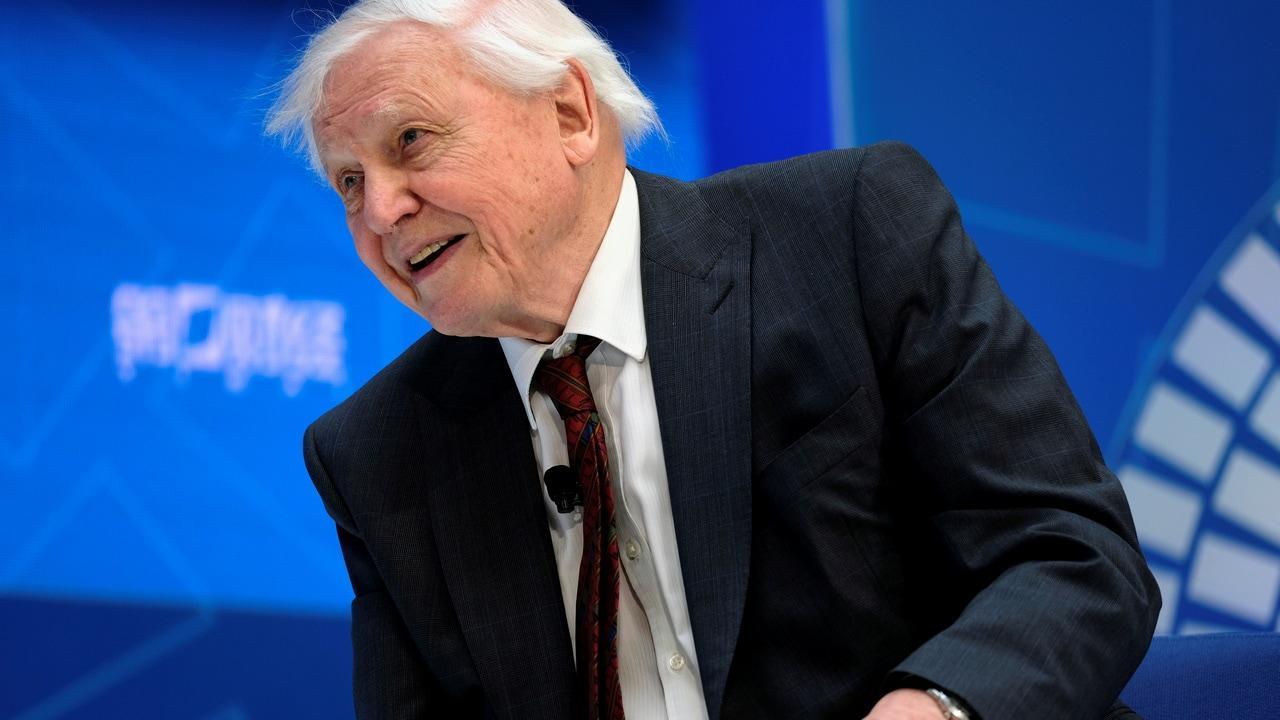 Le nouveau documentaire de David Attenborough avertit l'humanité de sauver d'autres espèces de l'extinction massive pour se protéger