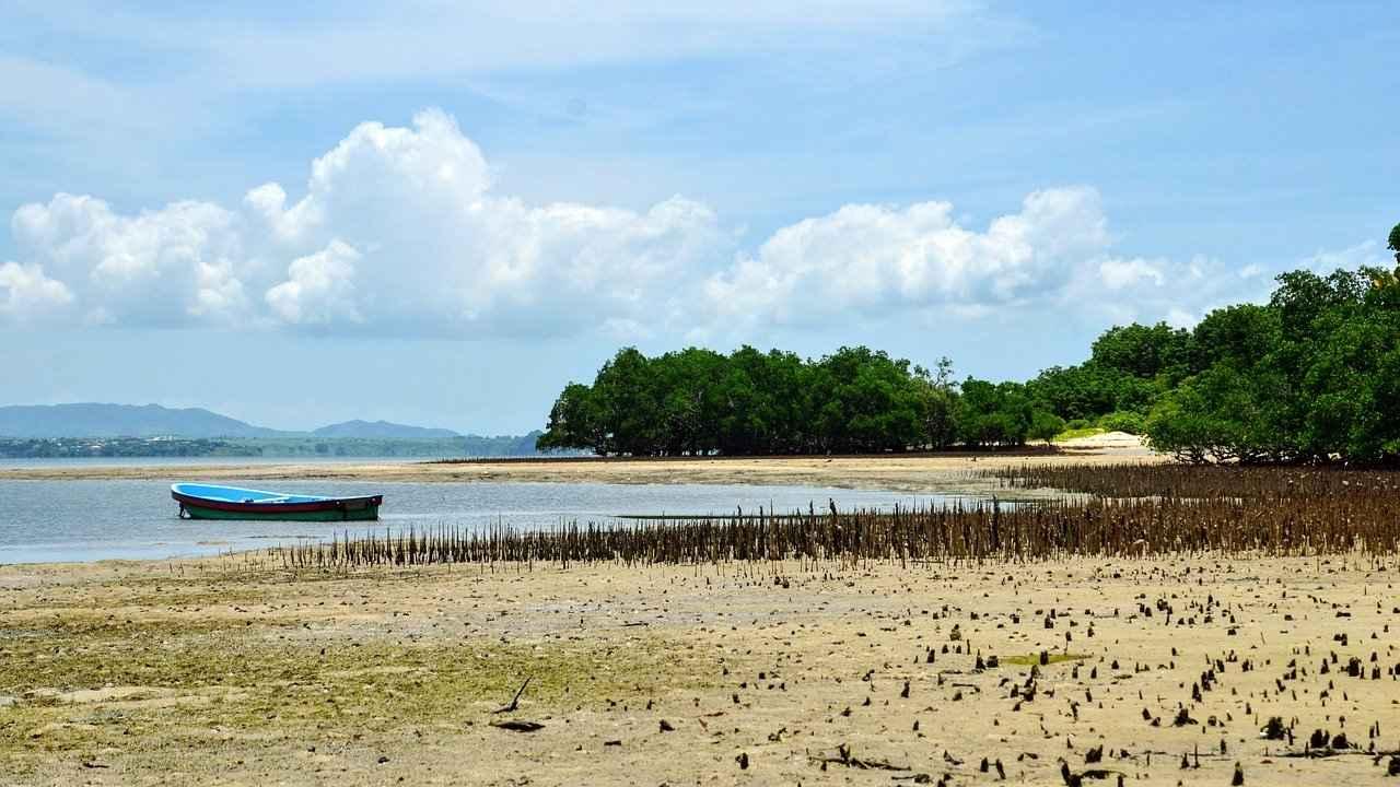 Les scientifiques développent une nouvelle façon de déterminer à quelle vitesse l'océan Indien se réchauffe en analysant les sons des tremblements de terre