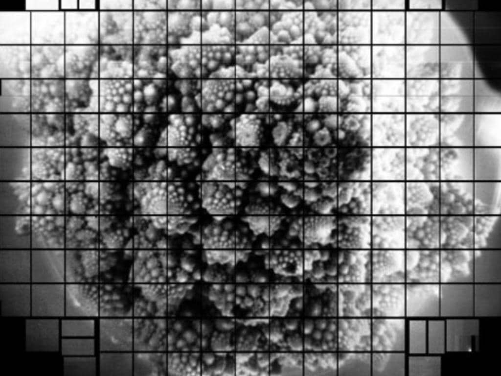 L'observatoire Vera C Rubin capture une première photo époustouflante et record de brocoli