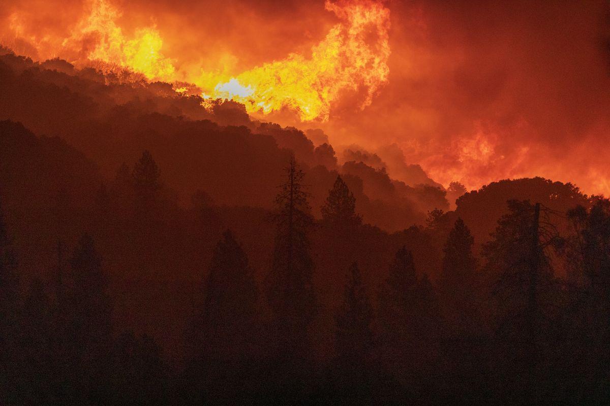 Un Record De 2,2 Millions D'acres Brûlé Par Les Incendies