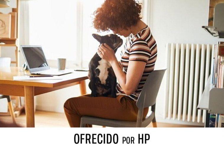 Travaillez de chez vous en toute sécurité grâce à HP