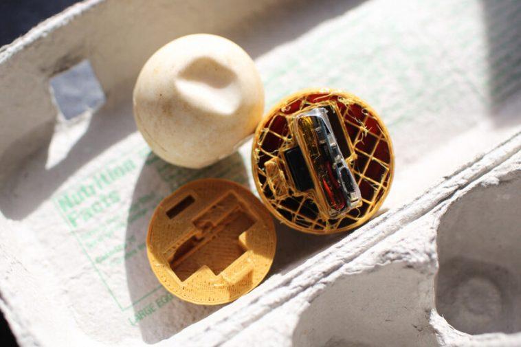 Des scientifiques créent de faux œufs avec le GPS pour lutter contre le trafic illégal de tortues au Costa Rica