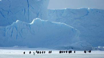 La Plus Grande Mission Scientifique Jamais Réalisée Dans L'arctique Se