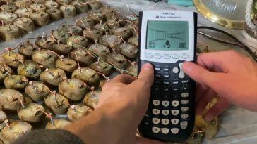 """Aujourd'hui dans """"DOOM travaille sur les choses"""": une calculatrice avec une batterie 770 pommes de terre"""
