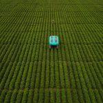 """Mineral est le projet d'Alphabet visant à """"produire plus de nourriture au cours des 50 prochaines années qu'au cours des 10 000 précédentes"""""""