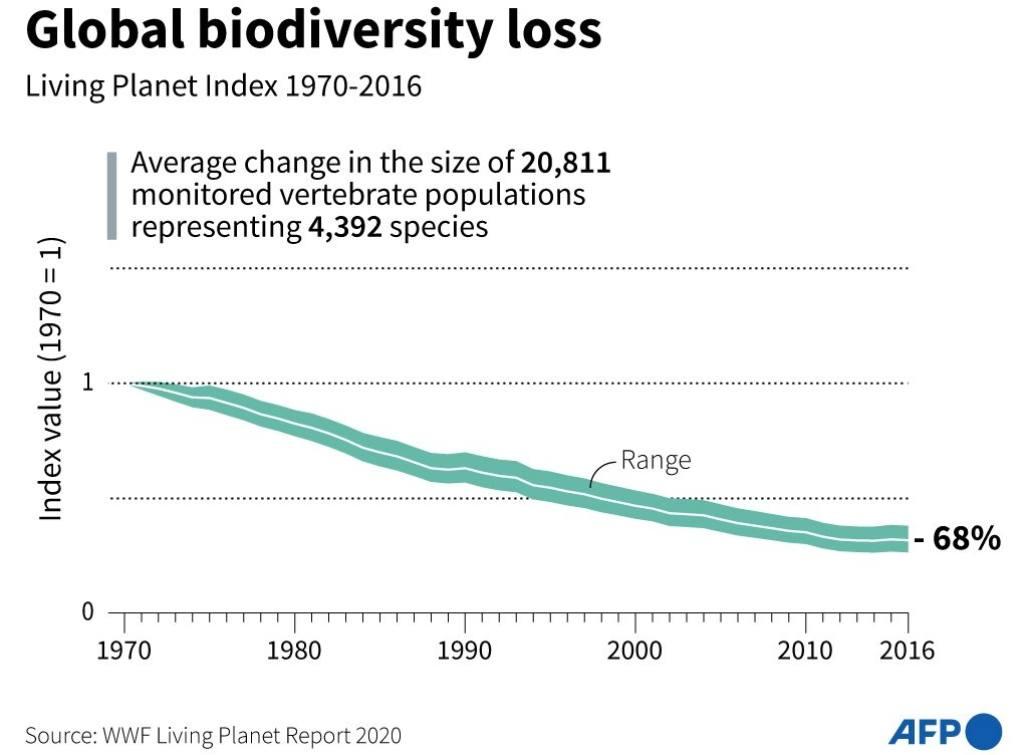 Objectifs 2020 de la Convention de 195 pays sur la diversité biologique pour protéger et restaurer la nature, y compris un ralentissement de la perte d'habitat.  Les scores de ces objectifs ont tous été manqués - dans certains cas, de beaucoup.  Courtoisie d'image: AFP / WWF