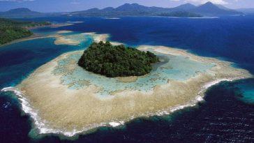 La Restauration De Certains Habitats Peut Empêcher Les Extinctions, Compenser