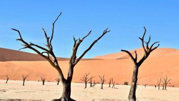 Le rêve d'extraire de l'eau dans le désert avec la seule aide du soleil commence à devenir une technologie utile et accessible