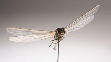 Ce robot libellule de 1 gramme a été conçu par la CIA comme un dispositif d'espionnage dans les années 1970