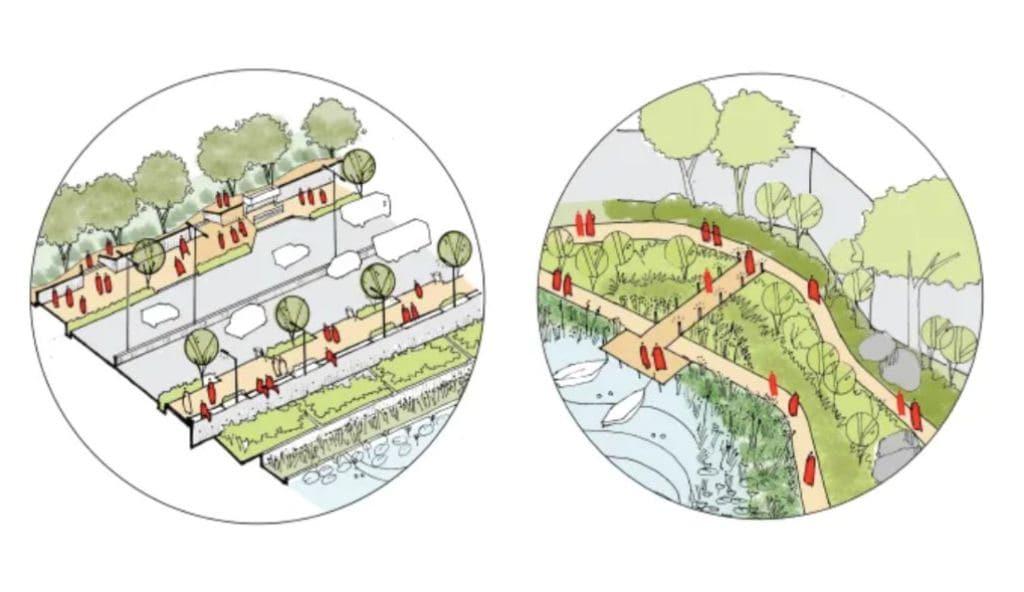 Renouveau du bord naturel du lac.  Image: Auteur fourni