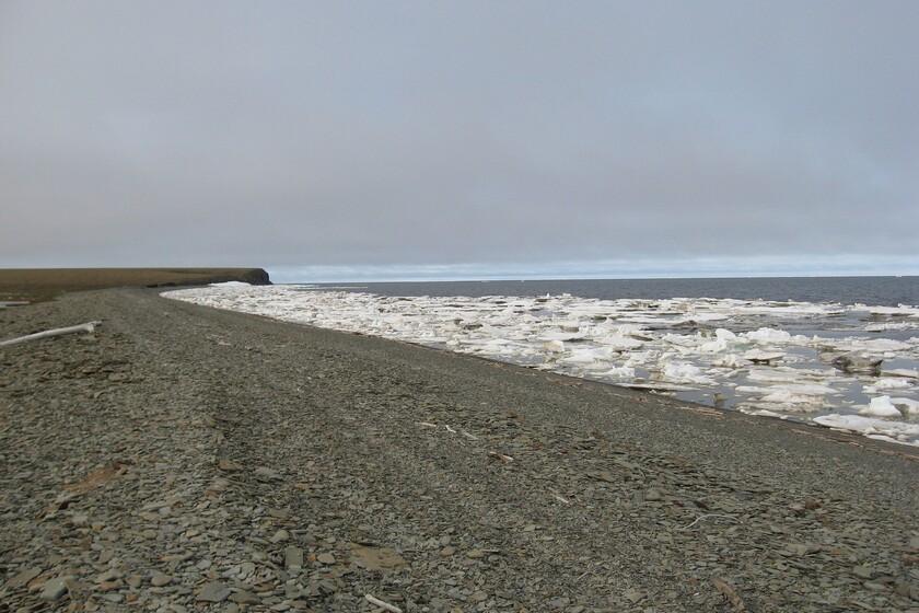 Pour la première fois, la mer de Laptev dans l'Arctique n'a pas gelé en octobre: le plus grand dégel jamais enregistré