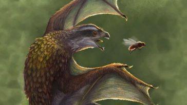 Ces Minuscules Dinosaures à Petites Ailes Volaient Probablement Plus Mal