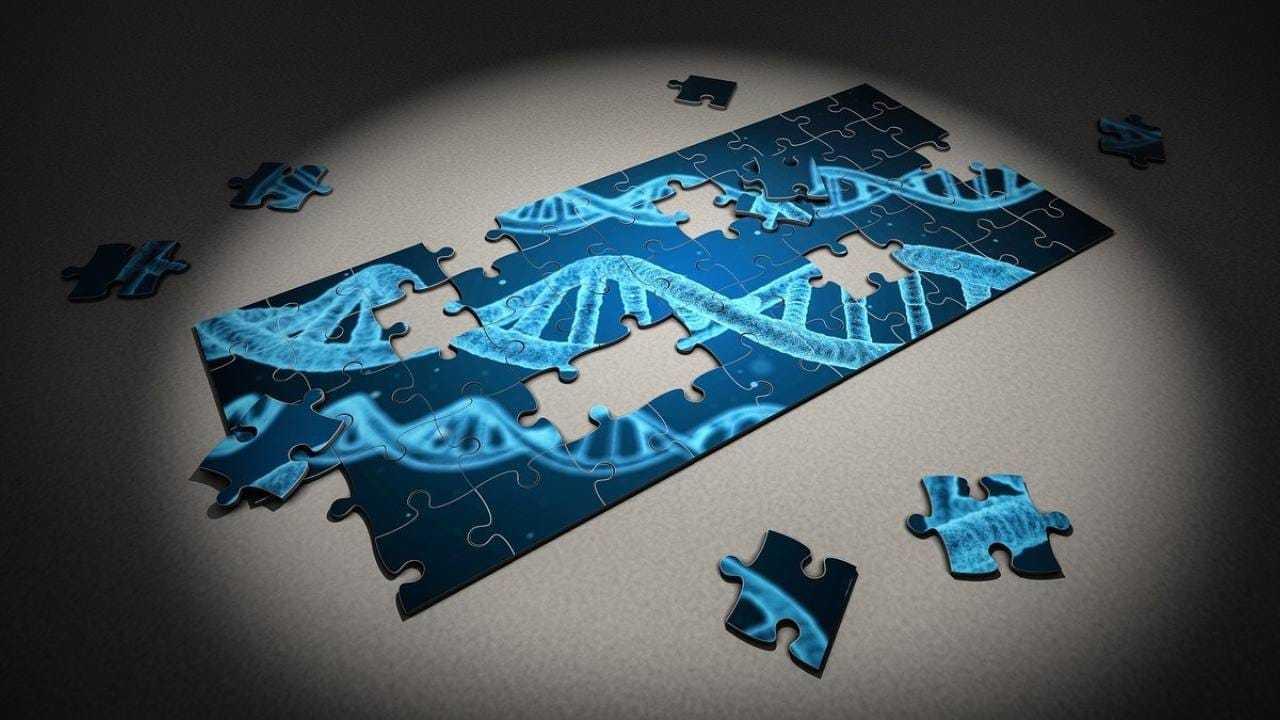 L'analyse du génome des Africains met en lumière les migrations anciennes, la sensibilité moderne, la résistance aux maladies