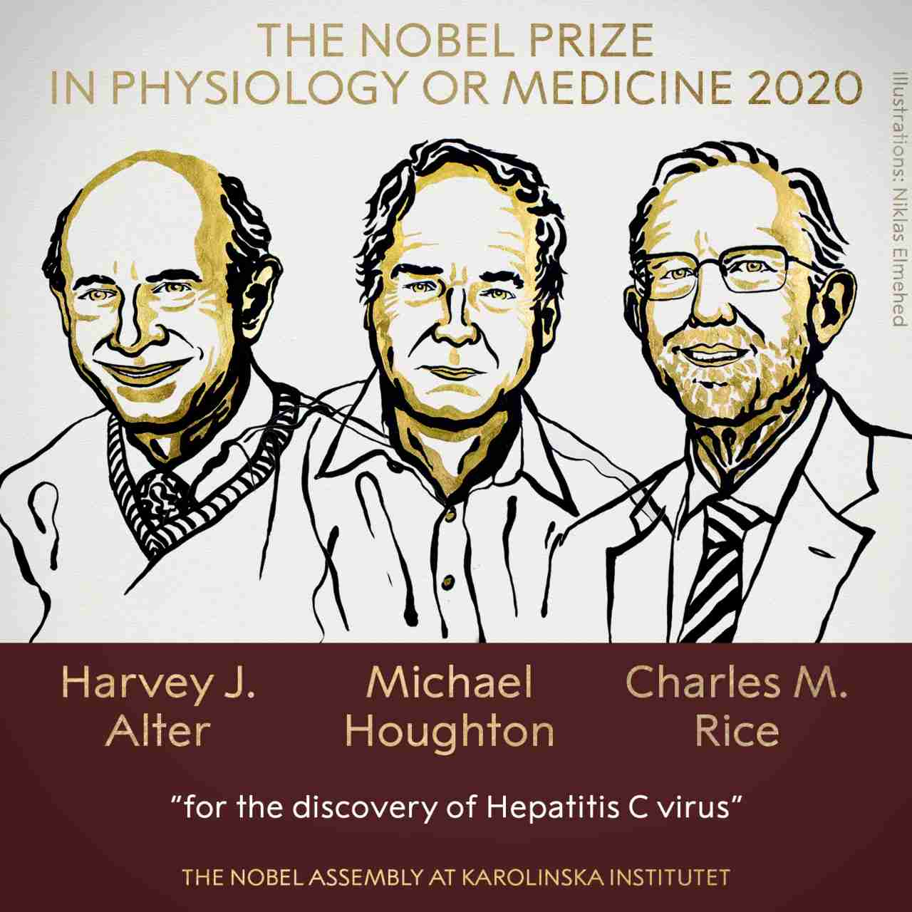 Le prix Nobel de médecine 2020 décerné à trois chercheurs pour la découverte du virus de l'hépatite C, facilitant la guérison