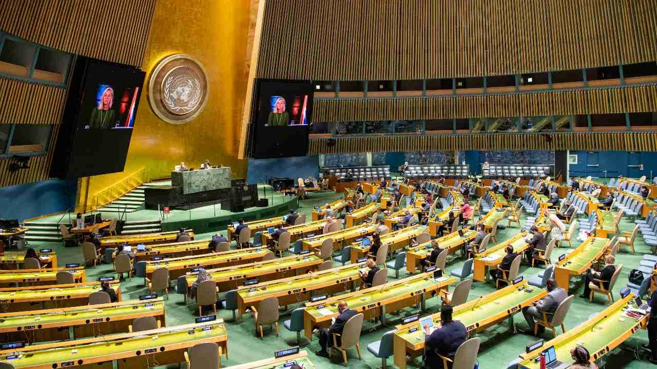 Nous sommes à la dernière heure: de Guterres au prince Charles, les dirigeants mondiaux se battent pour une action rapide au Sommet de la biodiversité de l'AGNU
