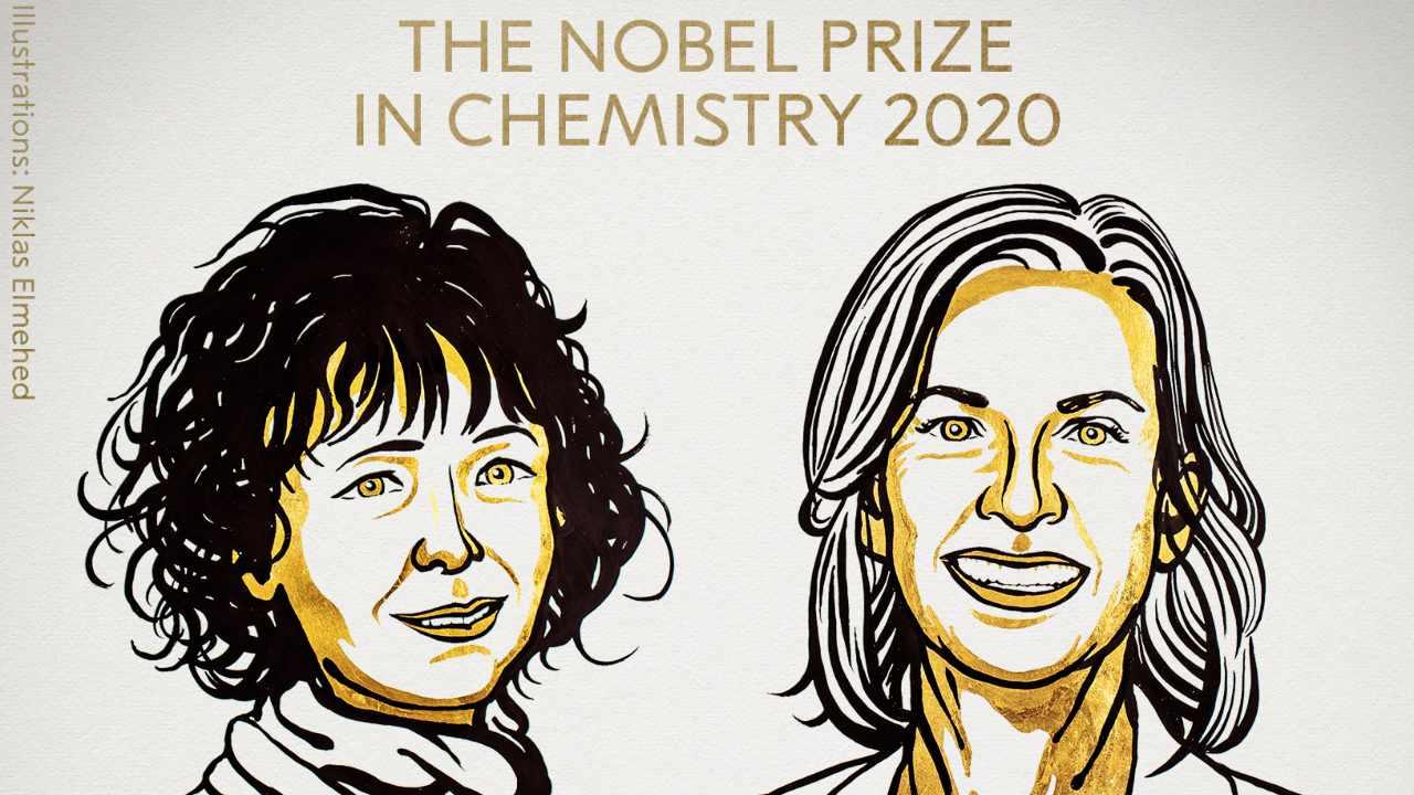 Prix Nobel de chimie décerné à deux femmes scientifiques pour leurs travaux sur l'édition du génome