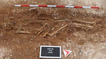 Un Chef De Guerre Anglo Saxon Découvert Par Des Amateurs De