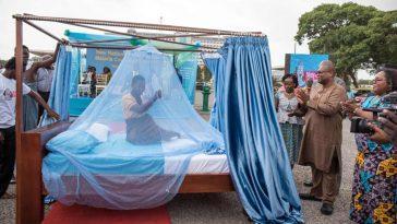 Un Mystère Du Paludisme, En Partie Résolu: Que Se Passe T Il