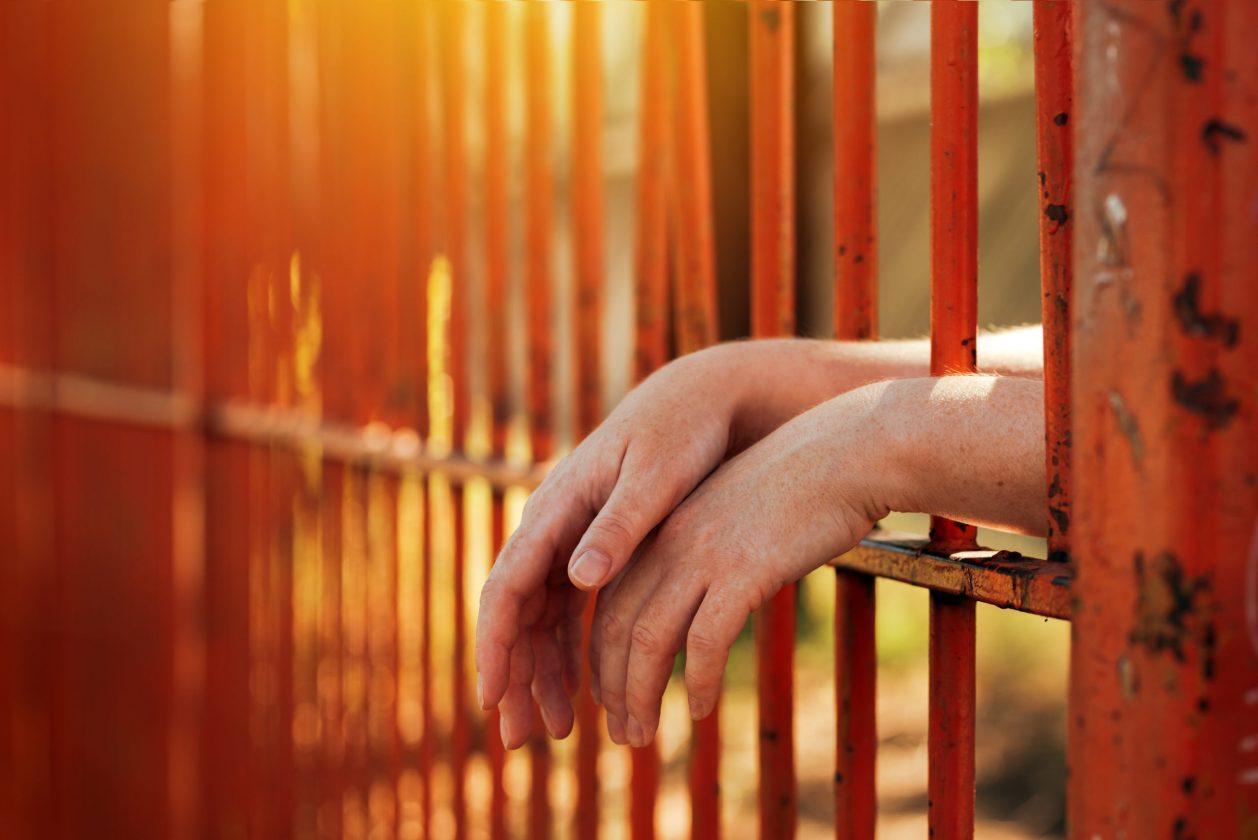 Une Femme Trans Enfermée En Isolement Pendant 15 Mois Pour