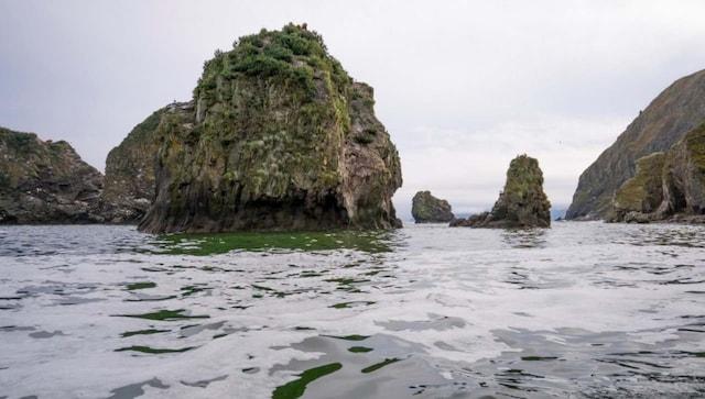 Une fuite de carburant de fusée aurait pu causer la pollution de l'eau et tuer la vie marine dans la région russe du Kamtchatka