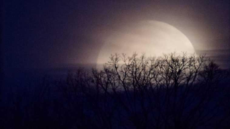 Une Rare Pleine Lune à L'halloween Sera Vue à Travers