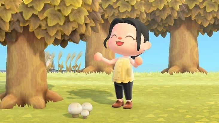 Animal Crossing Démarre La Saison Des Champignons: Toutes Les Recettes