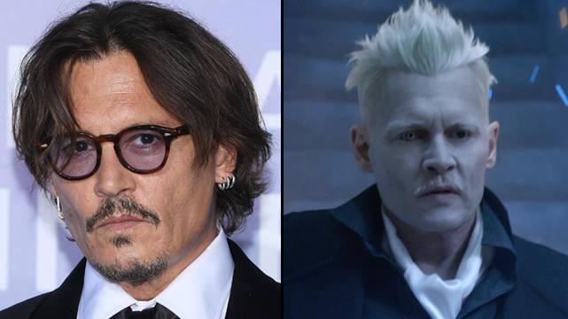 Johnny Depp Quitte La Franchise Fantastic Beasts, Contraint De Démissionner