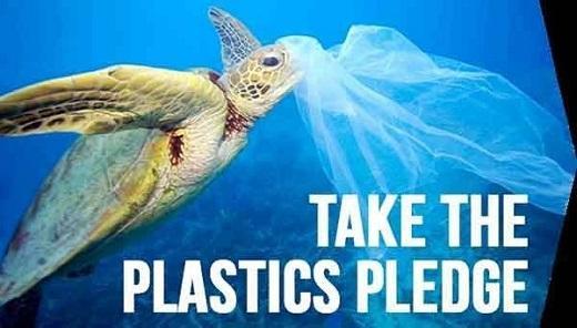 La Pollution Plastique Est Partout Et Crée Plus De Problèmes