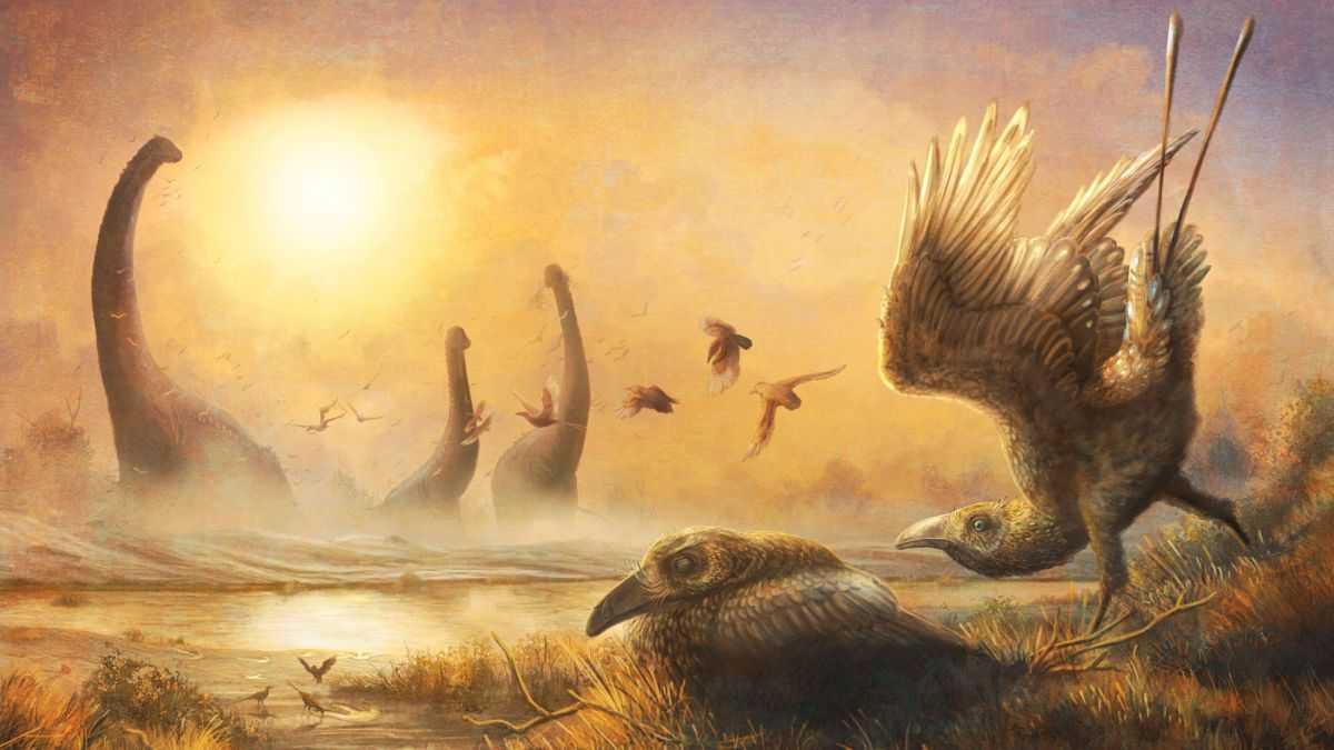 L'oiseau De L'ère Dino Avait La Tête D'un Vélociraptor Et