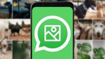 Comment enregistrer des photos WhatsApp dans votre galerie mobile