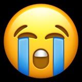 visage qui pleure fort_1f62d