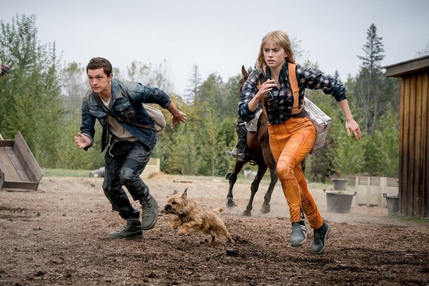 Bande-annonce de 'Chaos Walking': action sur une autre planète du réalisateur de 'Edge of Tomorrow' avec Tom Holland et Daisy Riley