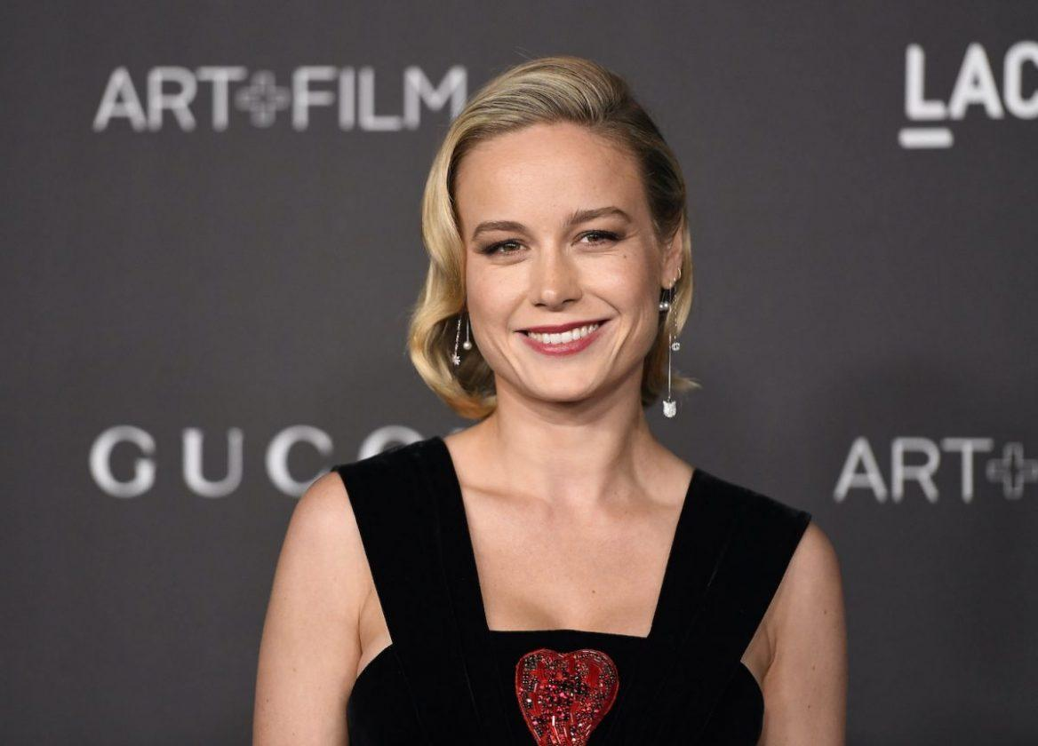 Brie Larson attends the 2019 LACMA 2019 Art + Film Gala